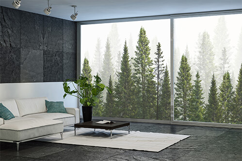 Window stickers Dark green straight trees forest