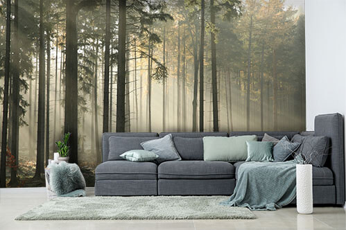 Self-adhesive wall murals Picturesque autumnal forest on a foggy morning