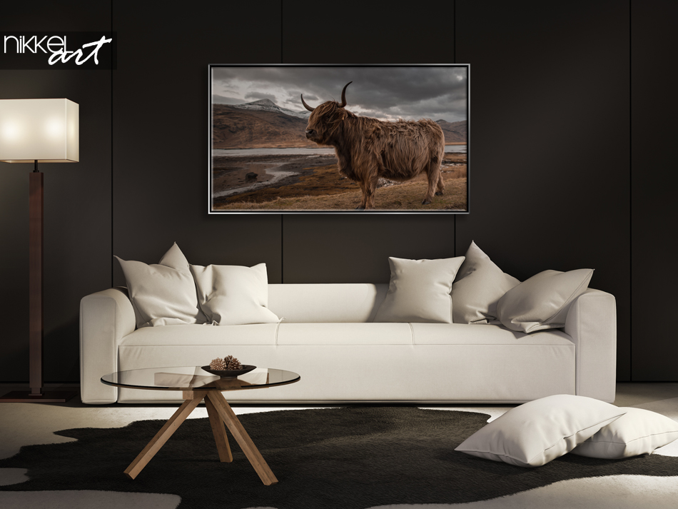 Photo Highlander Cow on Textile Frame