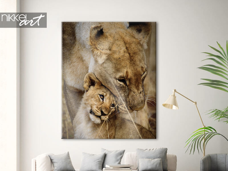 Canvas prints Mother and Child Lions