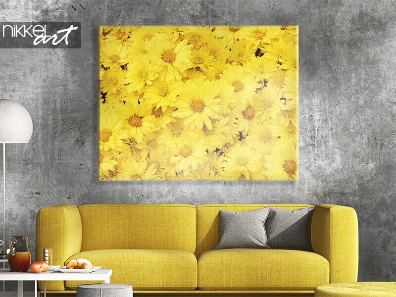 Canvas print dandelion, wall mural gray concrete wall