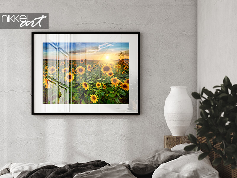 Frame picture with sunflowers