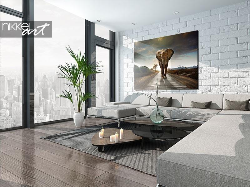 A photo on aluminium or plexiglass: what do you choose?
