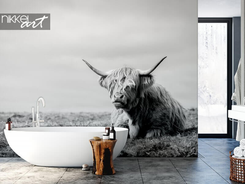 Trending now: highland cow wall murals