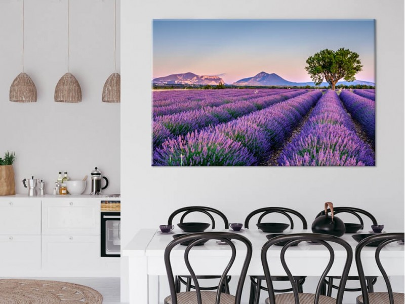 The most beautiful flowers on canvas