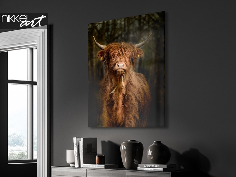 Decorate your walls with a scottish highlander