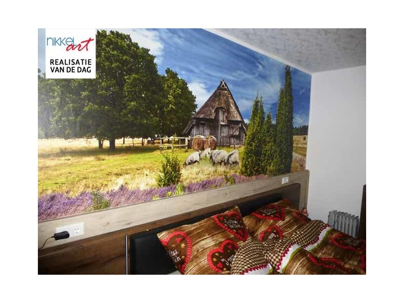 Wall Murals: Wallpaper with a unique photo