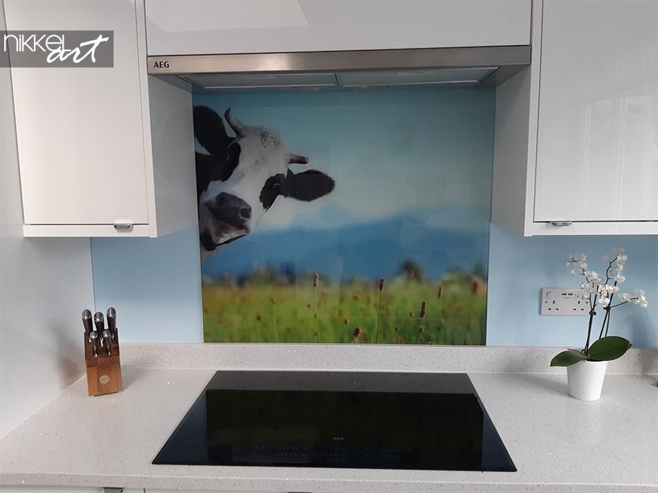 Printed Kitchen Splashback Cow