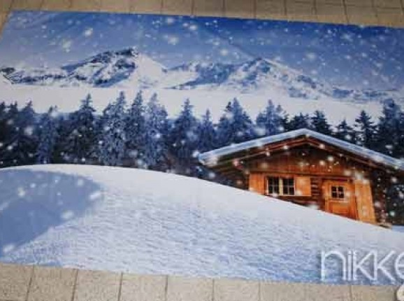 Photo of Garden Poster winter