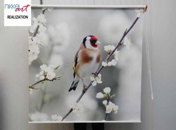 Printed roller blinds Bird