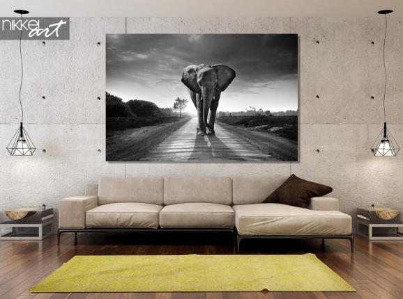 Acrylic prints, elephant, black and white