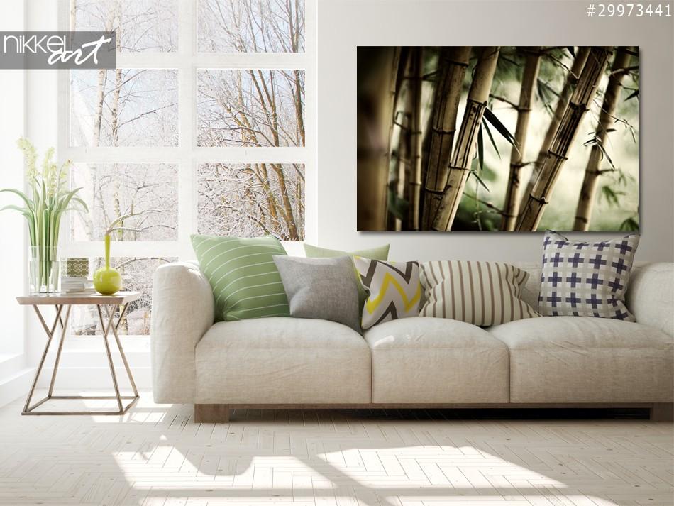 Aluminium Prints Bamboo forest