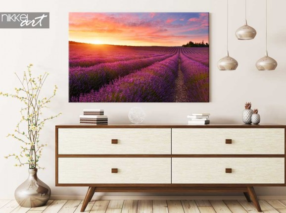 Canvas Prints Lavender