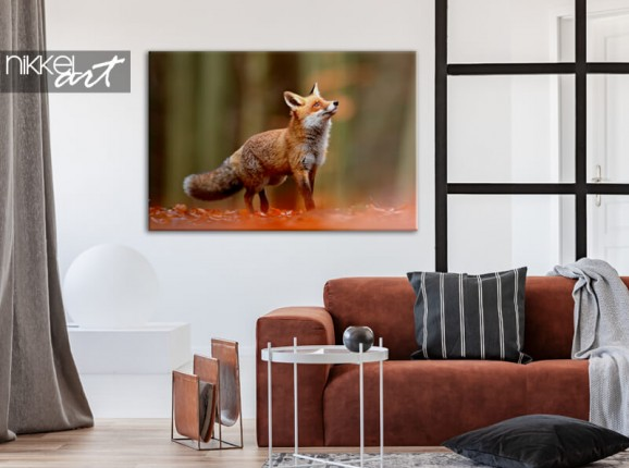 Fox on canvas