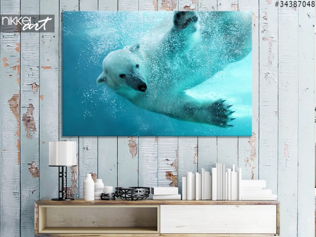 Canvas Prints Polar bear