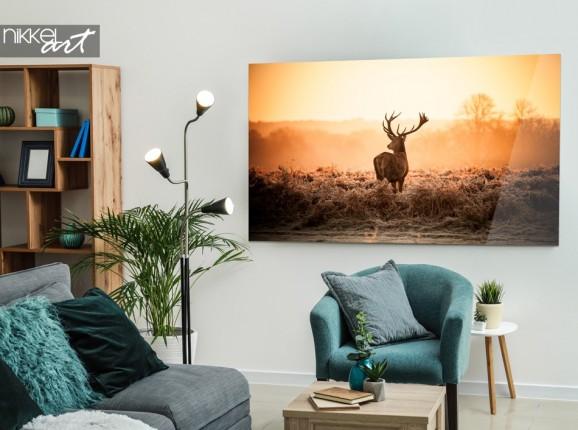 Photo on Acrylic Deer