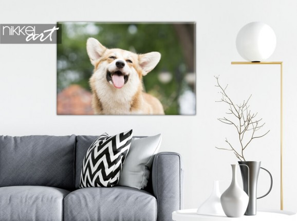 Photo of your dong on canvas