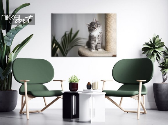 Photo of your cat on canvas