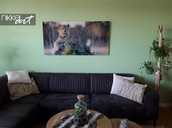 Photo on acrylic of a leopard