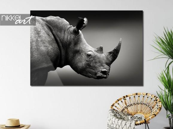 Rhinoceros on acrylic