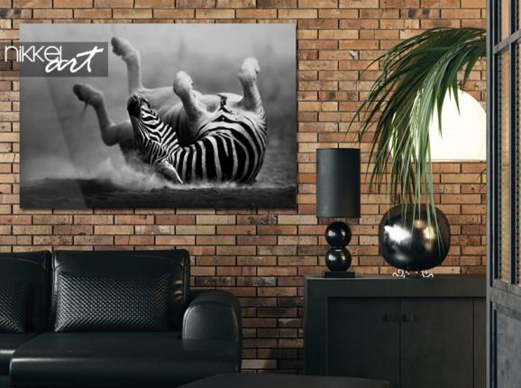 Zebra on acrylic