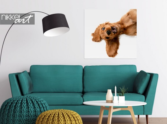 Photo of your dog on poster