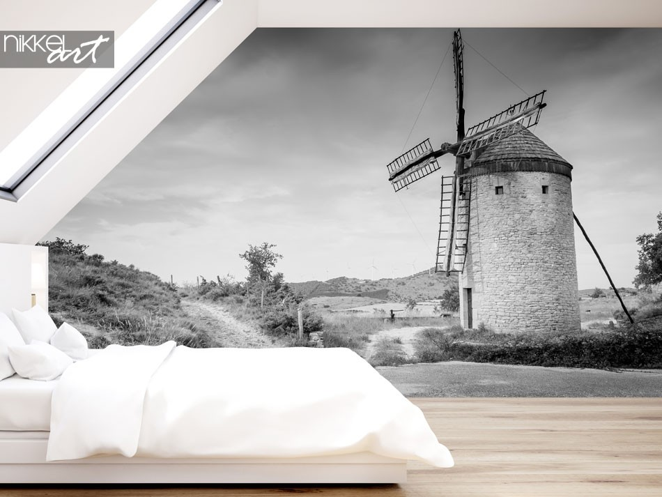 Wall murals off a mill in black and white effect, Antiguo Molino de Guerinda