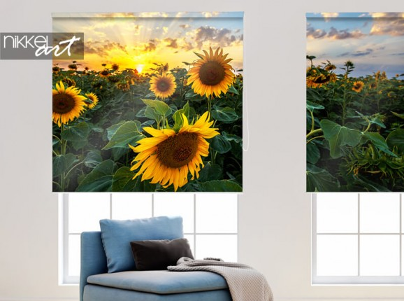 Sunflowers on photo roller blinds