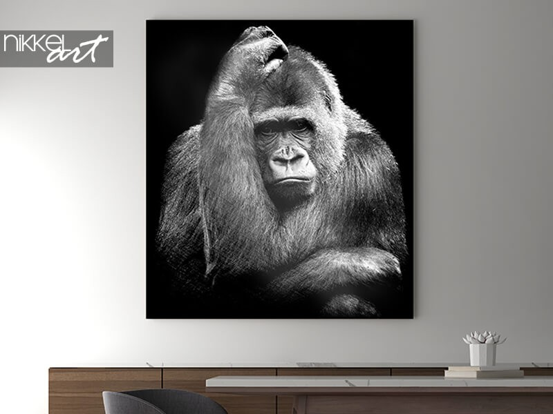 Gorilla on aluminium