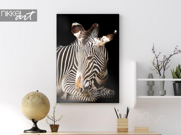 Zebra on aluminium