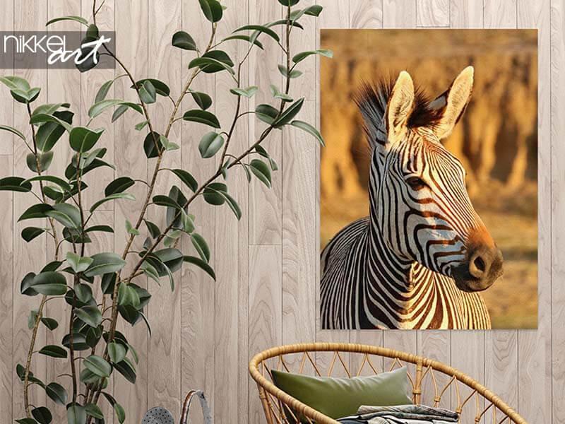 Garden poster with zebra