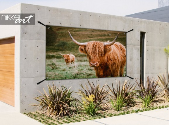 Garden poster Scottish highland cows