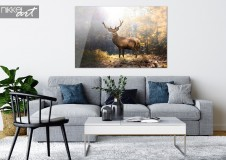 Acrylic Print Deer in Autumn Landscape