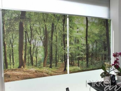 Photo roller blinds Forest