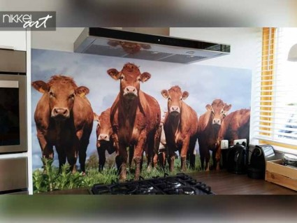 Printed kitchen splashbacks Cow