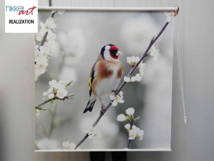 Printed roller blinds Bird