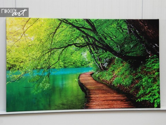 Photo on Canvas Road in forest