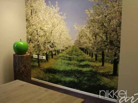 Wall Murals Flowering fruit trees on Lake Constance