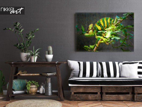 Rustic Interior with Photo Chameleon on Canvas