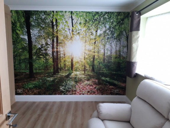 Wall Mural Green Forest with Sun